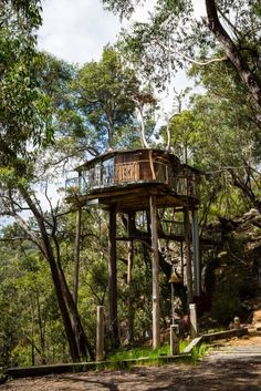 Blue Mountains Cabins Treehouse - special hotel, australia, dream, nsw