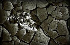 #sin #death #JamesBaldwin #writing #blogging
