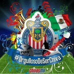 Chivas Wallpaper, Chivas Soccer, Football Mexicano, Fifa, Gorilla Gorilla, Humor, Angel, Humour, Funny Photos
