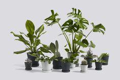 www.hay.dk files thumb-2-Flowerpot%20Family_2015-6-23_15-11-49.jpg