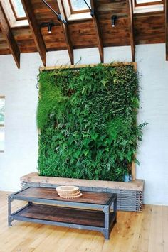 Green Walls: 13 Best Ways to Bring the Outside Into Your Home