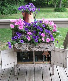 Petunia planterbox