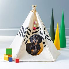 Are you interested in our pet bed ? With our dog cat tipi tepee you need look no further. Good Buddy, Pet Rabbit, Christmas Animals, Cat Gifts, Christmas Pictures, Small Dogs, Your Pet, Dog Cat, Cute Animals