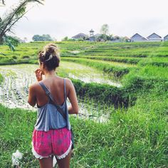 Have you ever wondered what it would be like to take a Gap Year?