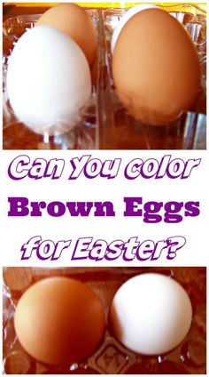 A great science experiment for Easter!  Spring science for kids