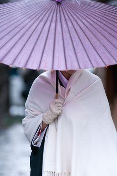 ombrelle violette