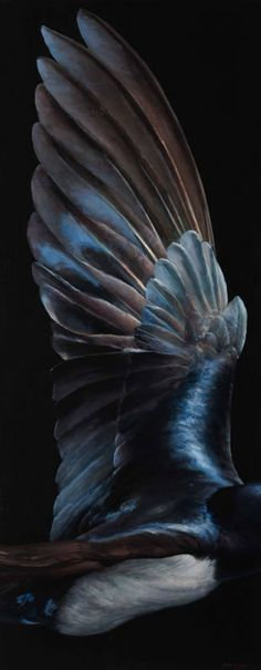 Wing Study - by James Guppy Art Zombie, Especie Animal, Bird Wings, Angel Wings, Crows Ravens, Guppy, All Nature, Foto Art, Bird Feathers