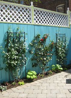 fun fence (for a small yard) (small rear garden ideas) Unique Gardens, Back Gardens, Small Gardens, Outdoor Gardens, Small Rear Garden Ideas, Backyard Ideas For Small Yards, Large Backyard Landscaping, Backyard Plan, Blue Fence