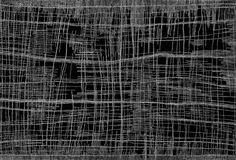 Lisez ce très bon article de Christine Nicholls sur la carrière de la grande Dorothy Napangardi qui nous a quitté récemment. Aboriginal Painting, Aboriginal Artists, Aboriginal People, Owl Cat, People News, Generative Art, Native Art, Zentangle, Abstract Art