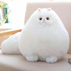 Cheap toys gift, Buy Quality animal peluche directly from China stuffed animal Suppliers: Fun Plush Fluffy Cats Persian Cat Toys Pembroke Pillow Soft Stuffed Animal Peluches Dolls Baby Kids Toys Gifts Brinquedos Stuffed Animal Cat, Stuffed Animals, Stuffed Toy, Cat Pillow, Plush Pillow, Cushion Pillow, Cat Cushion, Cute Plush, Cat Doll