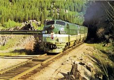 "https://flic.kr/p/ami1aU | Northern Pacific North Coast Limited, 1969 | The Northern Pacific Railway crack passenger train, the ""North Coast Limited"" passing thru somewhere in Montana.   Scanned from the Northern Pacific employee magazine ""GO! with Northern Pacific Railway"", August 1969 issue. This photograph was also used on the cover of the NP's 1969 passenger train timetable."
