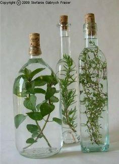 Make your own oil and vinegar - Stefanie Gabrych Fraser