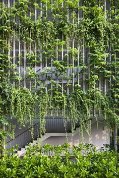 Gallery of Naman Retreat the Babylon / Vo Trong Nghia Architects - 21
