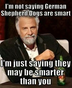 I'm not saying dogs are smart...