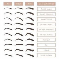 Various types of eyebrows. Classic type and other. Various types of eyebrows. Classic type and other. Vector illustration with different thickness of brows. Makeup tips. Types Of Eyebrows, Thick Eyebrows, Straight Brows, Eye Brows, Shape Eyebrows, Arched Eyebrows, Threading Eyebrows, Gel Eyeliner, Makeup Tricks