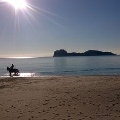 Sardinia landscape: L'inverno in Sardegna #sardegna#sardinialandscape#sardiniaexp#sardiniamylove#sardiniaphotos#instasardegna#lanuovasardegna#sardegnaofficial#sardinia#ig_sardinia#igersardegna#volgosardegna#sardinialove#insardegna#sardegnaofficial#sardiniacoasttocoast#loves_united_sardegna#sardegna_superpics#ig_terrasarda#sardegnageographic#horses#horseofinstagram#trekking#horsetrkking#beachtrekking#instagood#photooftheday - via http://ift.tt/1zN1qff e #traveloffers #holiday   offerte di…