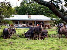 Santa Paloma Guest Farm and Eco-Centre, East London, Eastern Cape, South Africa