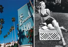Beverly Hills Hotel was six miles from the nearest railroad station—and light-years from reality. The setting, almost from the first, suggested a Keystone Kops comedy: glamorous, famous, and horny people all rushing in and out of the lobby, the coffee shop, and the fabled bungalows.