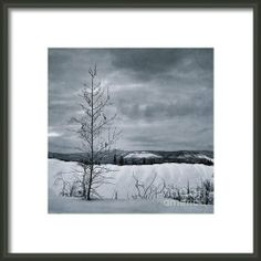 Land Shapes 15 Framed Print By Priska WettsteinWettsteinThis series is work in progress, I want to show the serenity, the unforgivness, the beauty of this landscape, where humans are only tolerated, not accepted.