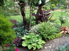 A Plantaholics Haven