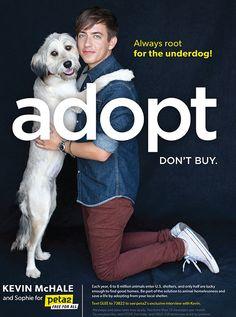 pet adoption marketing campaigns - Google Search