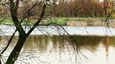 Xuân mong manh bên hồ