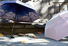 Stormy Weather: Umbrellas for All!um