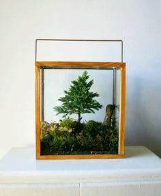 Love the diorama look to this terrarium..or is it a diorama? via poppytalk