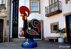 Galo de Barcelos Foto de Miguel Ferri - Olhares.