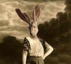 Jane Eare - Vintage Rabbit 5x7 Print - Anthropomorphic - Altered Photo - Jack Rabbit - Whimsical Art - Quirky Animal Print - Gift Idea. $15.00, via Etsy.