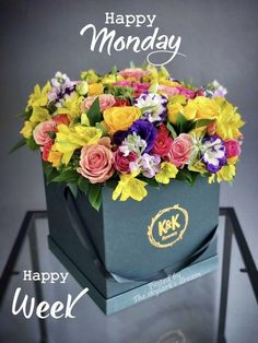 Succulents Drawing, Hanging Succulents, Indoor Succulents, Vertical Succulent Gardens, Flower Arrangements Simple, Box Roses, Succulent Wreath, Beautiful Rose Flowers, Luxury Flowers