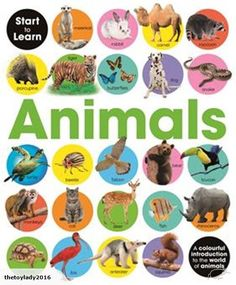 Start to learn: Animals -  Pre-School & Early Learning  This bright and attractive book introduces the key concept of the alphabet to support your child's early...