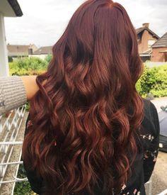 Igora 567 hair in 2019 hair color auburn dyed hair auburn hair. Brown Hair Shades, Dark Red Hair, Light Brown Hair, Orange Brown Hair, Dark Copper Hair, Burgundy Hair, Dark Brown, Hair Color Auburn, Brown Hair Colors