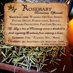 Potions, Candles, Incense, Crystals, Herbs & More * Bringing Magick to the Mundane! Magic Herbs, Herbal Magic, Witch Herbs, Kitchen Witchery, Spiritus, White Witch, Evil Spirits, Nature Spirits, Healing Herbs