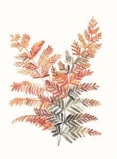 Autumn Fern - Archival Print. 20.00, via Etsy.