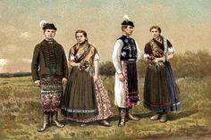 Szabolcs vármegye - Hungary