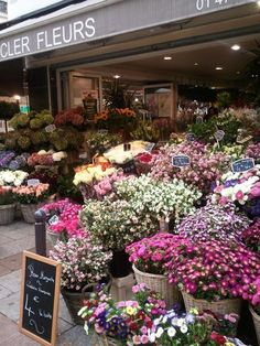 ~ Paris in October ~ Travel to Paris on a Rick Steves Paris & the Heart of Fran. ~ Paris in Octobe Paris France, Paris In October, Pink October, Belle Villa, I Love Paris, Paris City, Paris Paris, Flower Market, Flower Shops