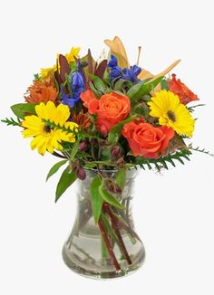 Gauteng Flower & Gift Delivery for all occasions. Whether you are looking for luxury or budget, our flower shops have what you are looking for. Color Splash, South Africa, Glass Vase, Gift Delivery, Colour, Flowers, Gifts, Home Decor, Color
