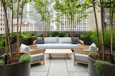 We designed our trade discount program to serve you so you can focus on serving your client. Our trade program includes the following benefits: + A dedicated trade sales representative + 20% to 40% discount depending on the size and the scope of the project + We ship to all locations in the US and Canada + No sales tax outside of WA state Modern Outdoor Living, Commercial Design, Outdoor Decor, Modern Garden, Modern Planters Outdoor, Custom Planters, Outdoor Living, Commercial Planters, Outdoor Furniture Sets