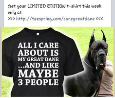 8cd804c2 49 Best Great Dane Shirts images | Great danes, T shirts, Tee shirts