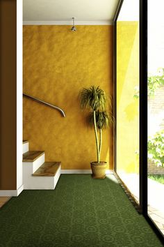 Possible idea for the basement. Yellow walls with green carpet. Yellow Carpet, Brown Carpet, Carpet Colors, Grey Carpet, Wool Carpet, Basement Carpet, Carpet Stairs, Textured Carpet, Patterned Carpet