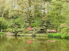 Parc oriental Maulévrier 49 jardin oriental - 113118434504119207618 - Picasa Albums Web