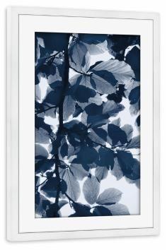 artboxONE Poster mit Rahmen 60x40 cm Floral Beech Leaves Indigo blau Gerahmtes Poster weiß - Wandbild Floral Kunstdruck von Lexie Greer