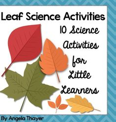 Leaf Science Activities - 10 hands-on activities to teach children about leaves!