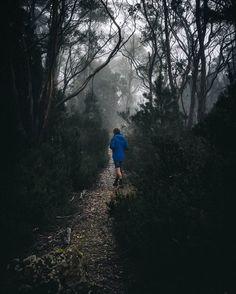 Uncover 5 scenic hikes near Hobart, Tasmania.  http://townske.com/guide/19396/amazing-short-hikes-near-hobart