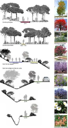 High Paying Landscape Architecture Jobs during Landscaping Ideas For Front Of House Small Area a Landscape Architecture Journal -- Landscape Design Ideas For Small Yards A As Architecture, Landscape Architecture Design, Architecture Graphics, Landscape Plans, Architecture Drawings, Urban Landscape, Architecture Journal, Landscape Architects, Power Points