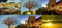 Waterkloof still SA`s Best Architecture and Landscapes champion