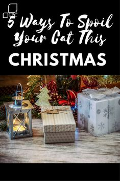 Christmas is a time for friends, family and tradition. Your pets are just as much a part of the family (sometimes more!) as the people seated at the dining room table