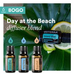 Buy Island Mint® 15 mL, get Purify 15 mL free! Stress Relief Essential Oils, Essential Oils Guide, Lime Essential Oil, Essential Oil Diffuser Blends, Doterra Diffuser, Doterra Essential Oils, Natural Essential Oils, Easential Oils, Osho