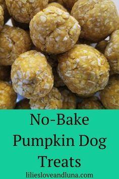 Soft Dog Treats, Frozen Dog Treats, Puppy Treats, Diy Dog Treats, Homemade Dog Treats, Healthy Dog Treats, No Bake Dog Treats, Pumpkin Dog Treats Homemade, Pumpkin Recipes For Dogs